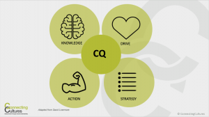 Kulturel intelligens cultural intelligence CQ Connecting cultures